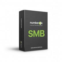 ПО распознавания номеров SW NumberOk SMB 12