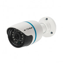 IP-видеокамера Tecsar IPW-M20-F20-poe