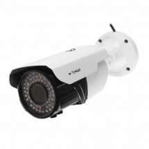 IP-видеокамера Tecsar IPW-M20-V60-poe